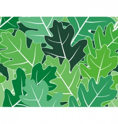 spring oak leaves seamless texture vector image