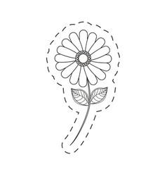 flower daisy floral decoration cut line vector image vector image