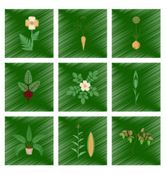 Assembly flat shading style papaver vector