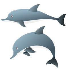 Dolphins in two actions vector