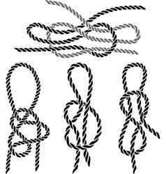 Sea knot 1 vector