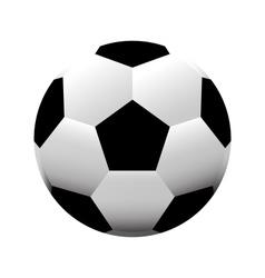 Soccer ball football vector image