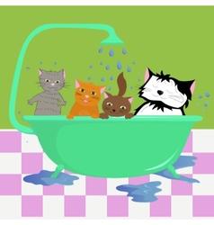 Cats in bath vector image