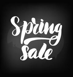 chalkboard blackboard lettering spring sale vector image