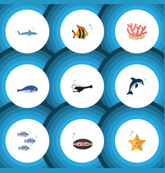 flat icon sea set of fish scallop cachalot and vector image