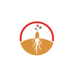 Ginseng icon vector