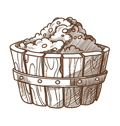grapes in wooden basin or basket isolated sketch vector image
