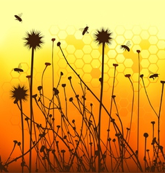 Grass silhouettes backgrounds and bees vector