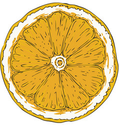 ripe orange slice vector image