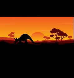 Beauty silhouette of kangaroo landscape vector