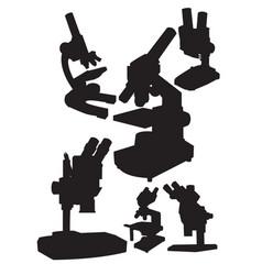 microscopes vector image vector image