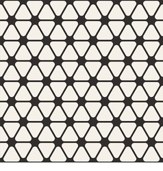 Black and White Tracery texture vector image