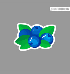 Cartoon fresh blueberries icon isolated sticker vector