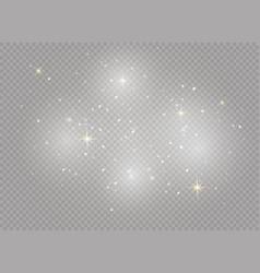 christmas dust white vector image