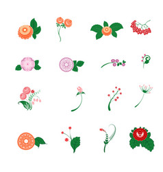 floral pattern decor element set ornamental vector image vector image