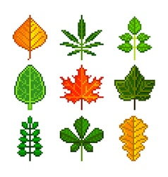 Pixel leaves for games icons set vector