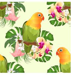 seamless texture parrot agapornis lovebird vector image