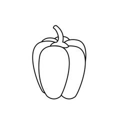 vegetable pepper isolated icon vector image