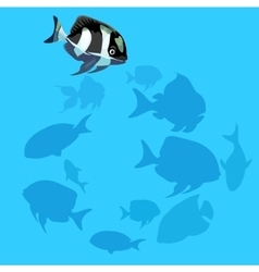 Black and white fish swims in the water vector image