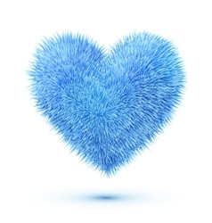Blue fluffy heart vector image vector image