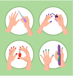 nail service collection banner vector image vector image
