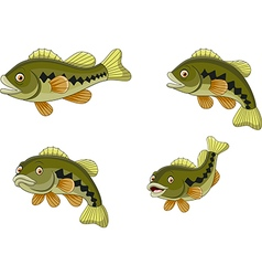 Cartoon funny bass fish collection vector image