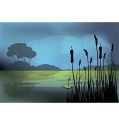 a night landscape vector image