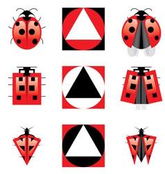 evolution of ladybug vector image