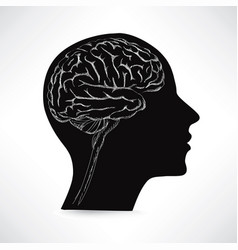 Female brain in head sign think icon concept vector