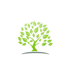 green tree ecology logo vector image
