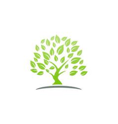 Green tree ecology logo vector