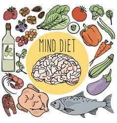 Healthy brain mind diet nutrition vector