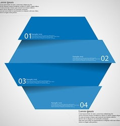Infographic template with hexagon divided to four vector