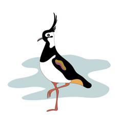 Lapwing bird vanellinae cartoon image vector