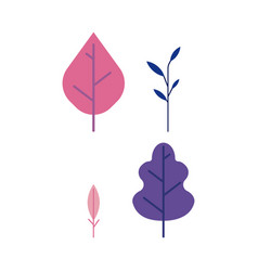 plant leaves set - decorative elements of trees vector image