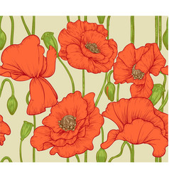 Seamless pattern of red poppies vector