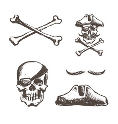 skull a pirate is one-eyed vector image