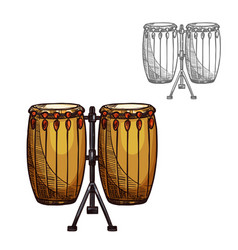 sketch folk drums musical instrument vector image vector image