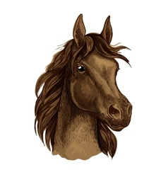 Brown mustang horse artistic portrait vector image
