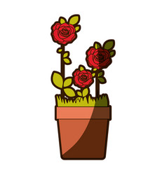 Colorful shading silhouette flowered roses planted vector