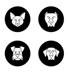 dogs breeds glyph icons set vector image