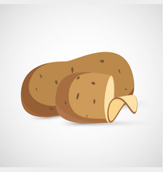 isolated potatoes vector image