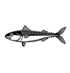 mackerel design element for logo label sign vector image