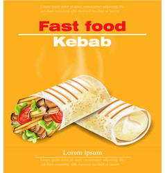 Shawarma kebab fast food detailed vector