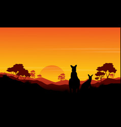 Silhouette of kangaroo st sunset scenery vector