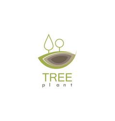 tree plant organic logo vector image