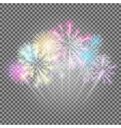 Fireworks Salute on a Transparent Background vector image
