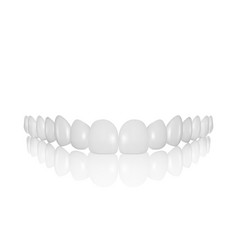 3d realistic render white denture set vector image