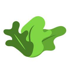 bush icon isometric style vector image