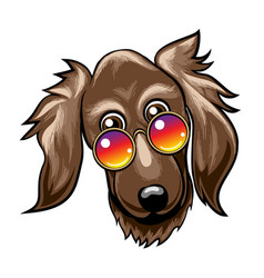 cute dog muzzle in rainbow glasses vector image